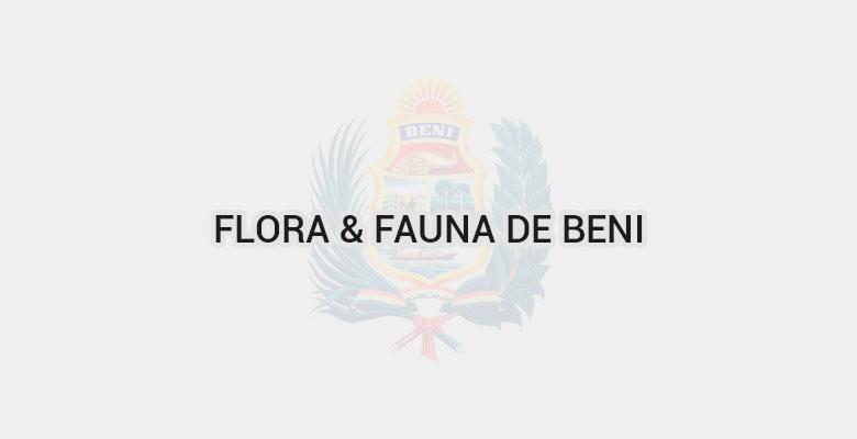 Flora & Fauna de Beni