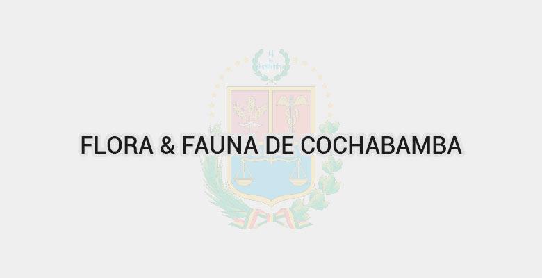 Flora & Fauna de Cochabamba