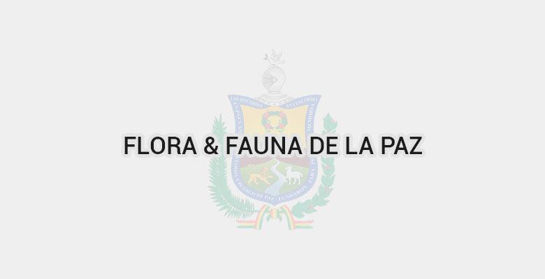 Flora & Fauna de La Paz
