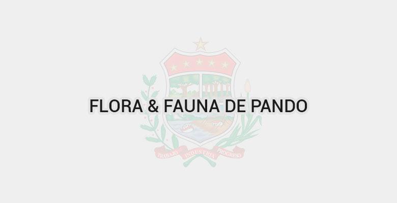 Flora & Fauna de Pando
