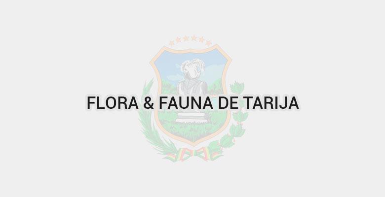 Flora & Fauna de Tarija