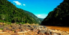 Reserva de La Biosfera y Territorio Indígena Pilón Lajas