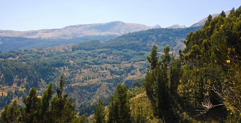 Parque Nacional Tunari