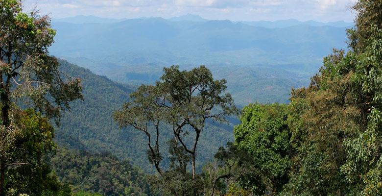 Reserva de la Biosfera Pilón Lajas