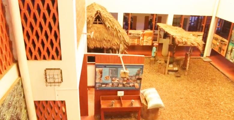 Museo Pedro Villalobos