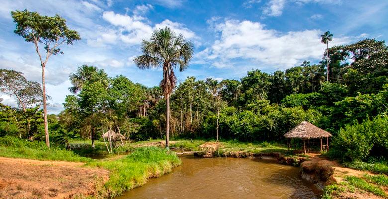 Reserva de vida Silvestre Manuripi
